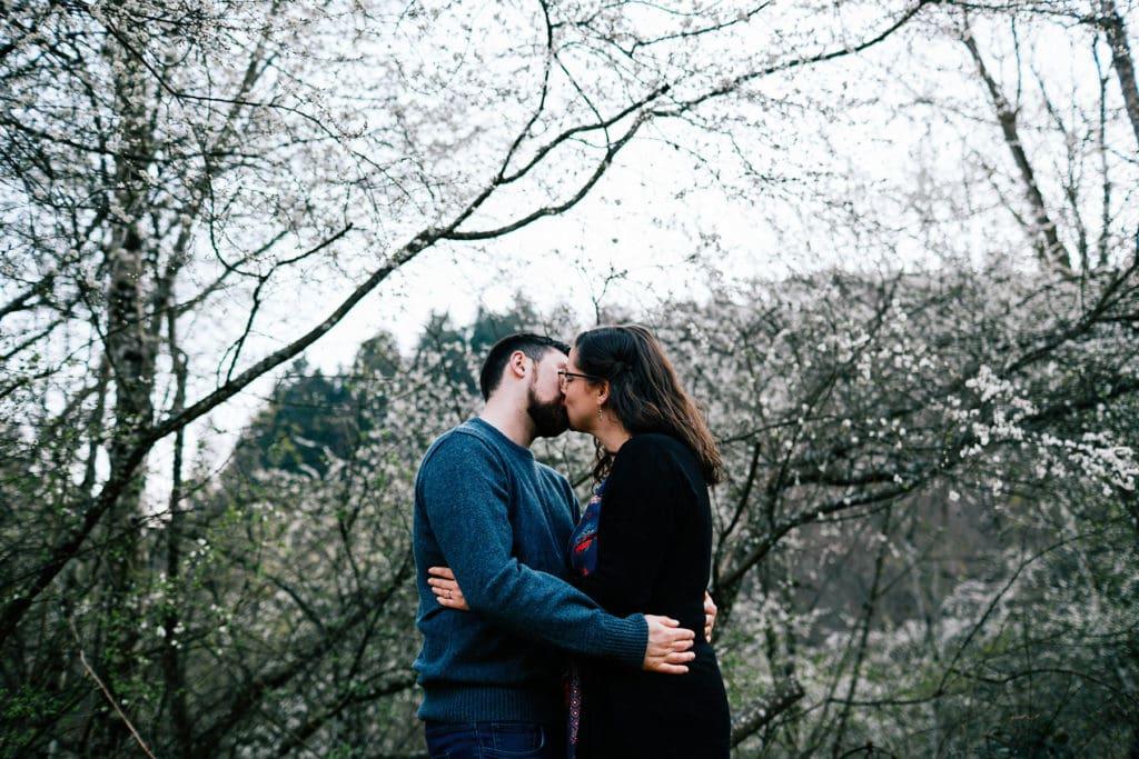 Photo de couple cerisiers